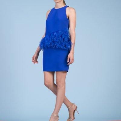azul-plumas-mk